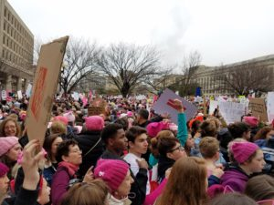 Crowd at Women's March on Washington
